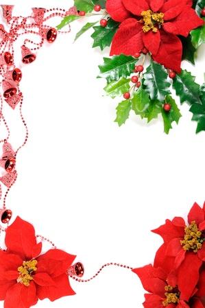 Poinsettias frame photo