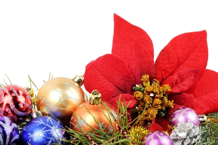christmas decor: Christmas flower poinsettia with xmas colorfull balls  and other decor