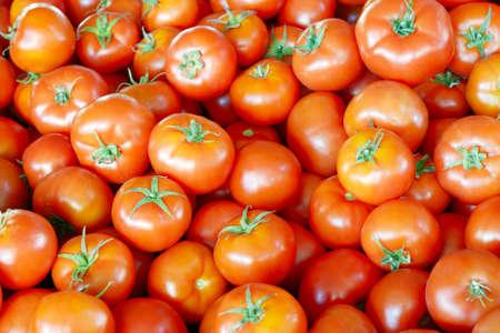 Lot of red fresh tomatos, closeup shot Stock Photo