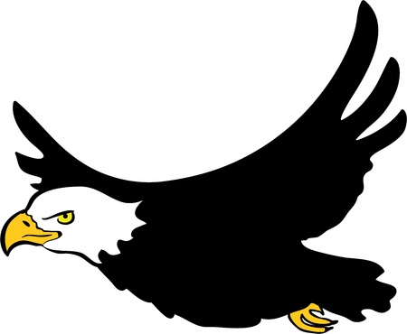 aguila volando: Ilustración vectorial de águila de cabeza blanca sobre fondo blanco