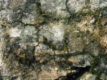 Texture of old brick with moss and cracks