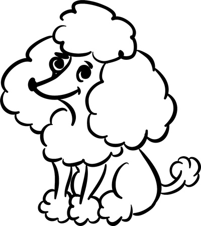 Funny poodle Illustration