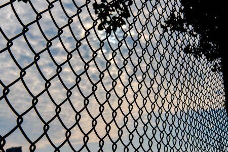 wire mesh: wire mesh