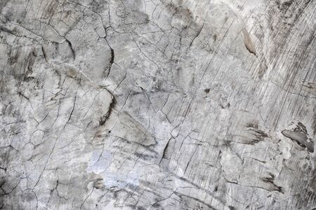 Grey cement wall with the crack on it looks like an art work. Reklamní fotografie