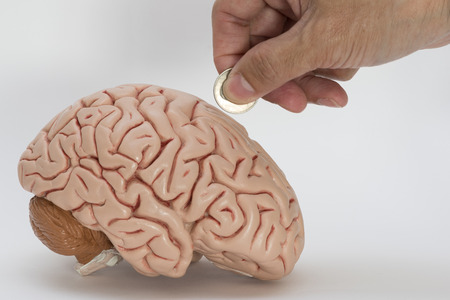 Concept of donation for the brain reseach by using hand donate a coin and human brain model