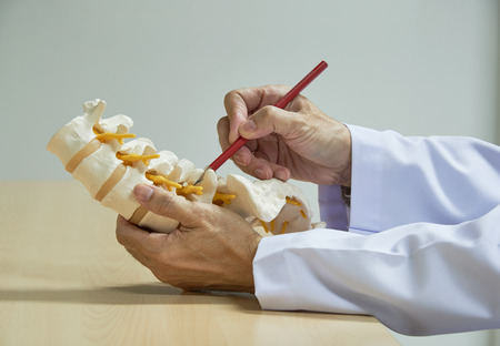 A neurosurgeon using red pencil demonstrating human lumbar spine model anatomy in medical office