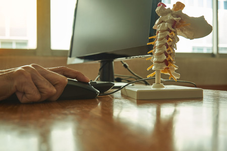 Doctor using desktop computer in the clinic and cervical spine model on the desk