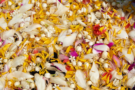 Close-up view of flowers in a bowl for bathing Buddha in Thai new year day or songkarn festival