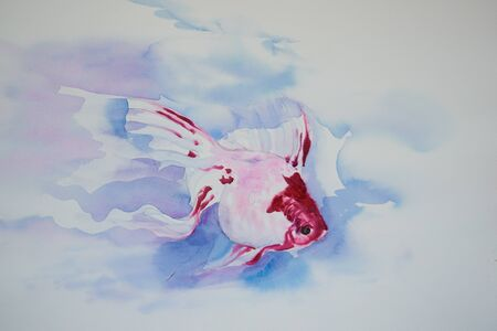 Watercolor painting of a beautiful swimming fish on white background Zdjęcie Seryjne - 132101588