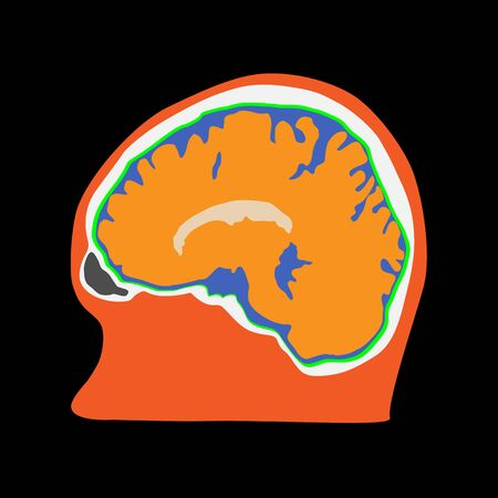 Side view of human brain illustration on the black background.