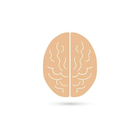 Vector illustration of human brain on white background