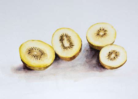 Watercolor painting delicious kiwi fruit cut in half on white background. Stock Photo