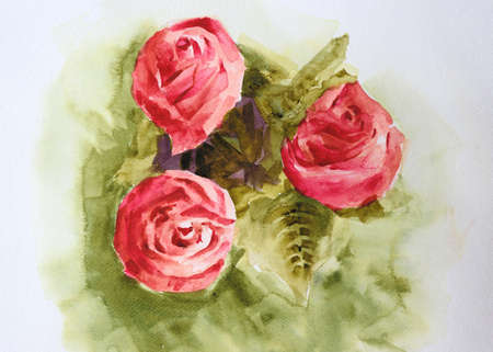 Watercolor painting beautiful red roses on white background