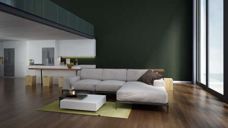 Modern cozy interior design indoor of double space living and dining room and pantry and green wall background