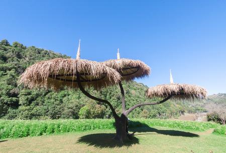 viewfinderchallenge3: Wood umbrella at  Doi Ang Khang, Chiang Mai, Thailand Stock Photo