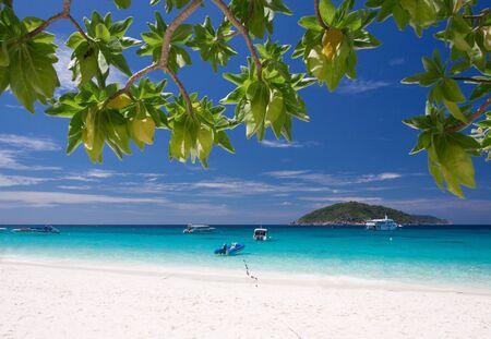 similan: Beautiful tropical beach at Similan island,Thailand