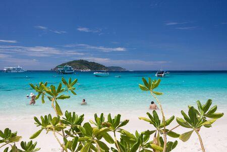 similan: Tourists swimming in the blue sea at similan island.