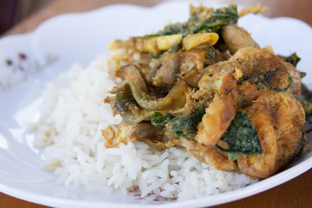 silver perch: Deep fried grouper fish spicy with rice.
