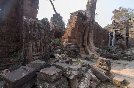 Huge roots  on the temple in Pra Khan ,Siem Reap,Cambodia Stock Photo
