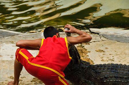 SAMUTPRAKARN, THAILAND - JUNE 11: A man was putting his head in a crocodiles mouth in a crocodile show at Samutprakarn crocodile farm & zoo June 11, 2010 in Samutprakarn, Thailand.