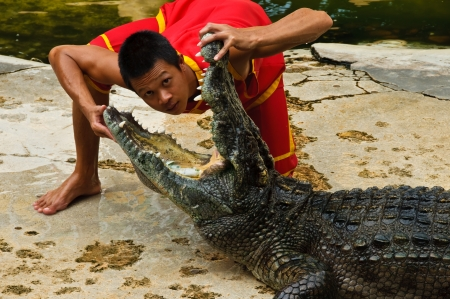 SAMUTPRAKARN, THAILAND - JUNE 11: A man was putting his head in a crocodiles mouth in a crocodile show at Samutprakarn crocodile farm & zoo June 11, 2010 in Samutprakarn, Thailand.