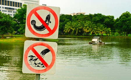 no fishing and no feeding sign in a park, Thailand photo