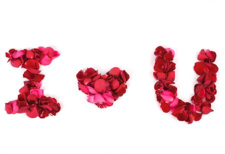 red rose petals, grouped together, create an