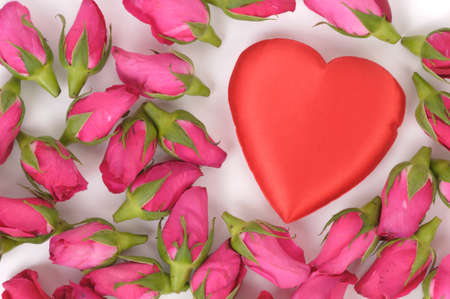 big heart shape and pink roses on white background photo