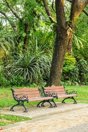 Benches in the park in the summer. photo