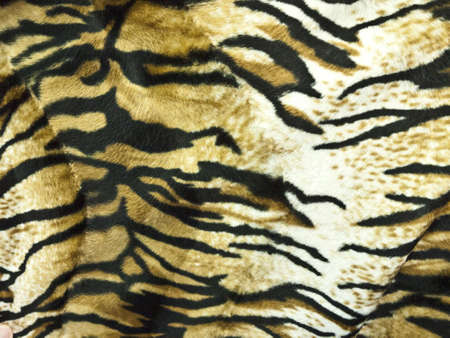 Tiger Skin Background Stock Photo - 9878122