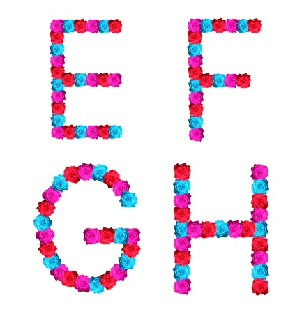 colorful of rose alphabet - letter E,F,G,H Stock Photo - 10057154
