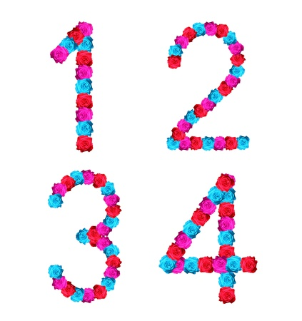 colorful of rose alphabet number - number 1,2,3,4 Stock Photo - 10057150