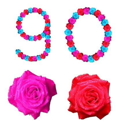 colorful of rose alphabet number - number 9,0 Stock Photo