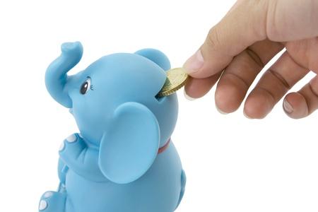 bolsa dinero: Ahorrar dinero concepted poniendo una moneda en un banco de elefante.