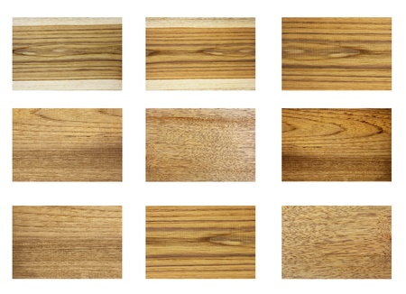 Texture of wood pattern background collections
