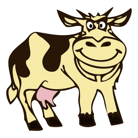 Cow illustration Graphic  illustration