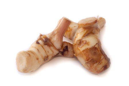 Galangal  Blue ginger  in isolated white background  Stock Photo - 17030915