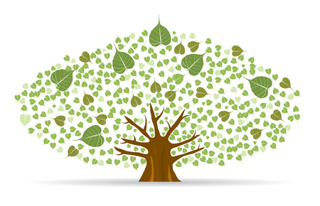 spiritual growth: Set of Bodhi (Sacred Fig) tree Vector Illustration.