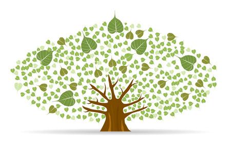 leaf: Set of Bodhi (Sacred Fig) tree Vector Illustration.