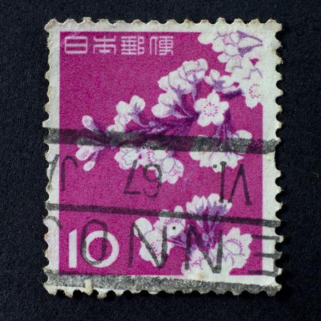 estampilla: JAPAN - CIRCA 1962: A stamp shows cherry blossoms printed in Japan, circa 1962.