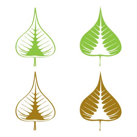 Set of Bodhi (Sacred Fig) leaf Vector Illustration.  Vector
