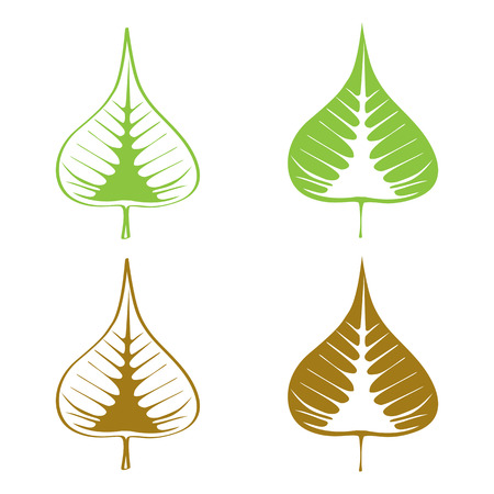 Set of Bodhi (Sacred Fig) leaf Vector Illustration.