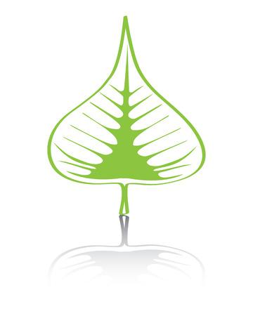 fig leaf: Bodhi (Sacred Fig) leaf Vector Illustration.  Illustration