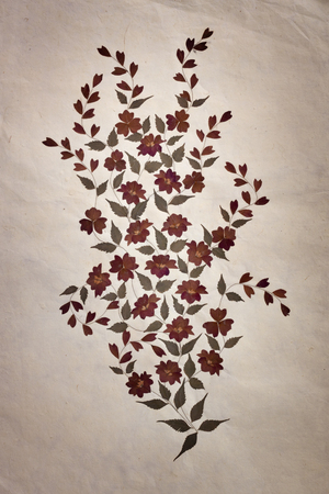 Old Mulberry paper with dry flower art background  photo