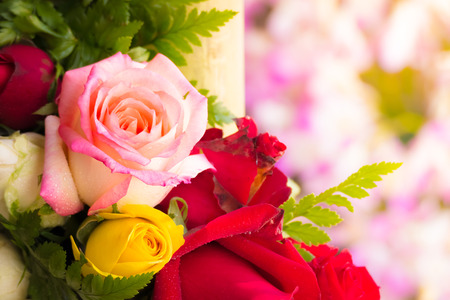 rea: beautiful background with flowers roses, valentine background, flowers background