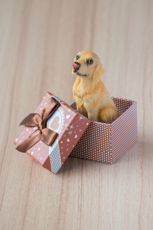 amore: Dog in a gift box on a wooden floor. holiday background. gift background