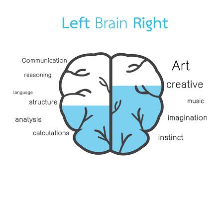 right ideas: left brain and right brain Illustration