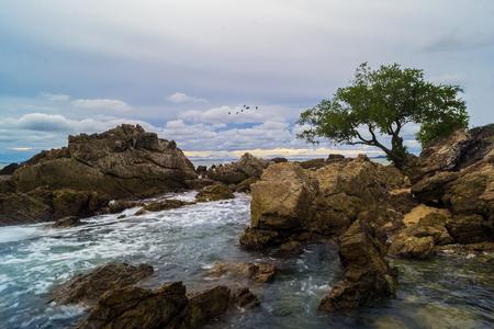 nature backgrounds: sea Stock Photo