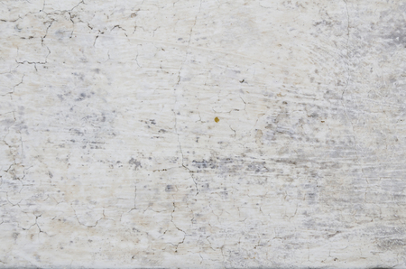 fastness: Stone texture background