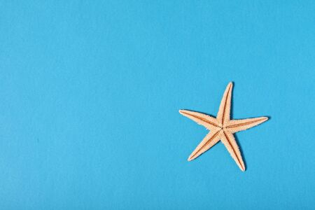 star fish on blue background Stock Photo - 5387534